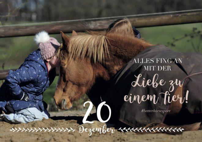 Alifewithhorses.de Advents-Kalender für Pferdemenschen