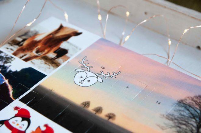 Schokoladen-Adventskalender-Ponys