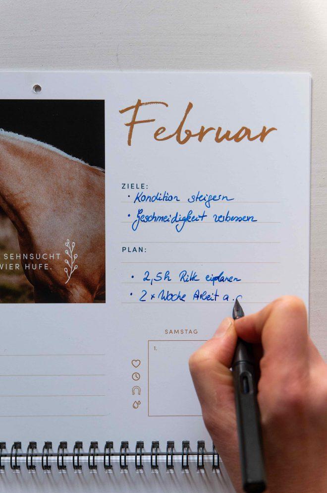 Trainingskalender Pferd
