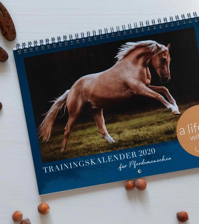 Trainingskalender für Pferdemenschen